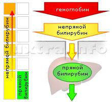 Анализ на гепатит через месяц
