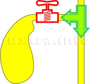 Отключенный жёлчный пузырь